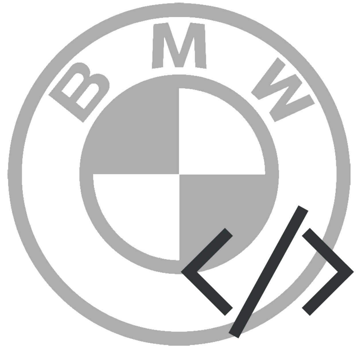 BMW Coding Icon