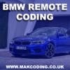 Remote-Coding