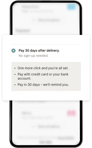 Klarna-Pay-Later-Pay-in-30-days-checkout-05